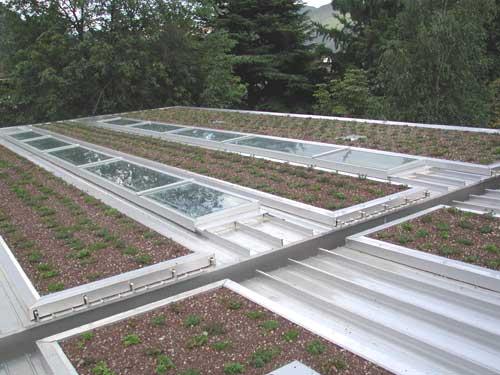 Copertura tetto piano in pvc o bituminoso for Piani tetto shed